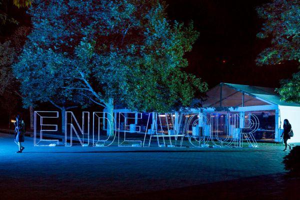 Endeavour 2017 image 11